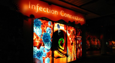 Infection Connection cropped1